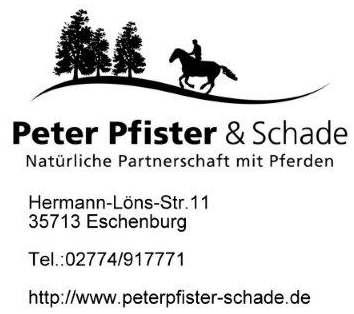 Logo Pfister  Schade